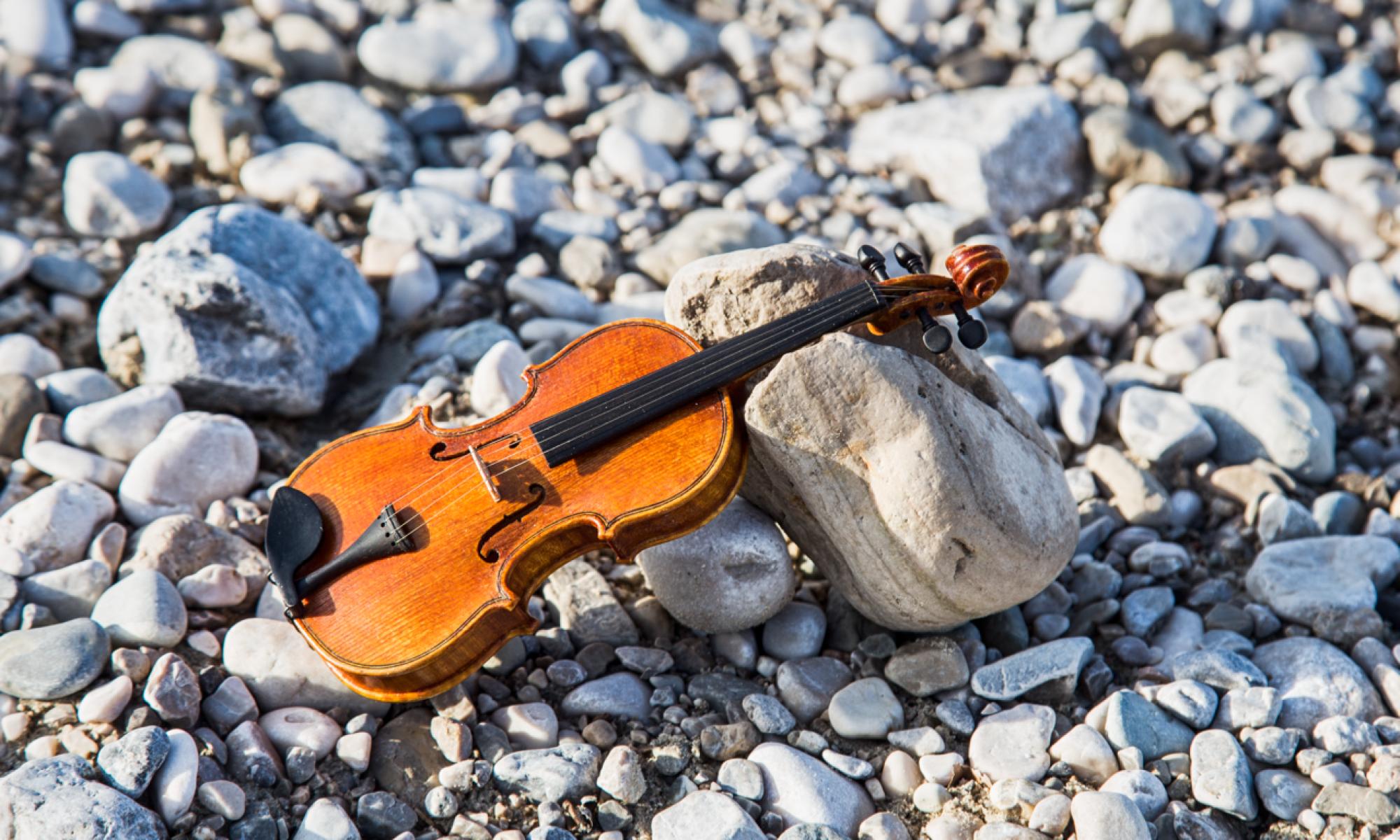 Geigenbau-Sandner